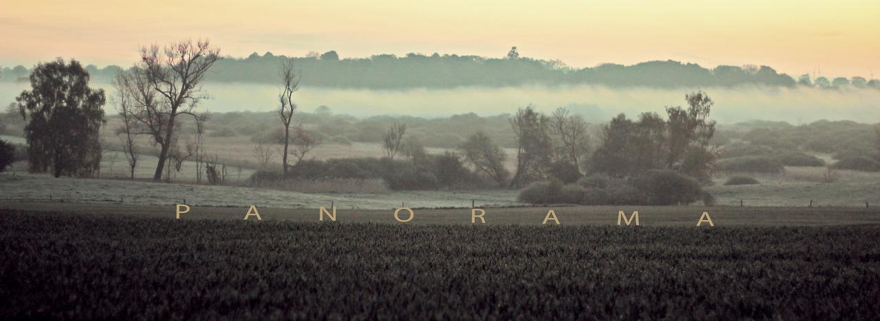 LOCAL MAG - Verlosung MICRONAUT Album 'Panorama'